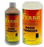 FERRO Coco Bloom A + B - 1 Litre