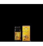 ATAMI - Rootbastic 100 ml - Stimulateur de racines