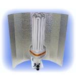Kit Eco CFL 85 W - croissance - 6400 K
